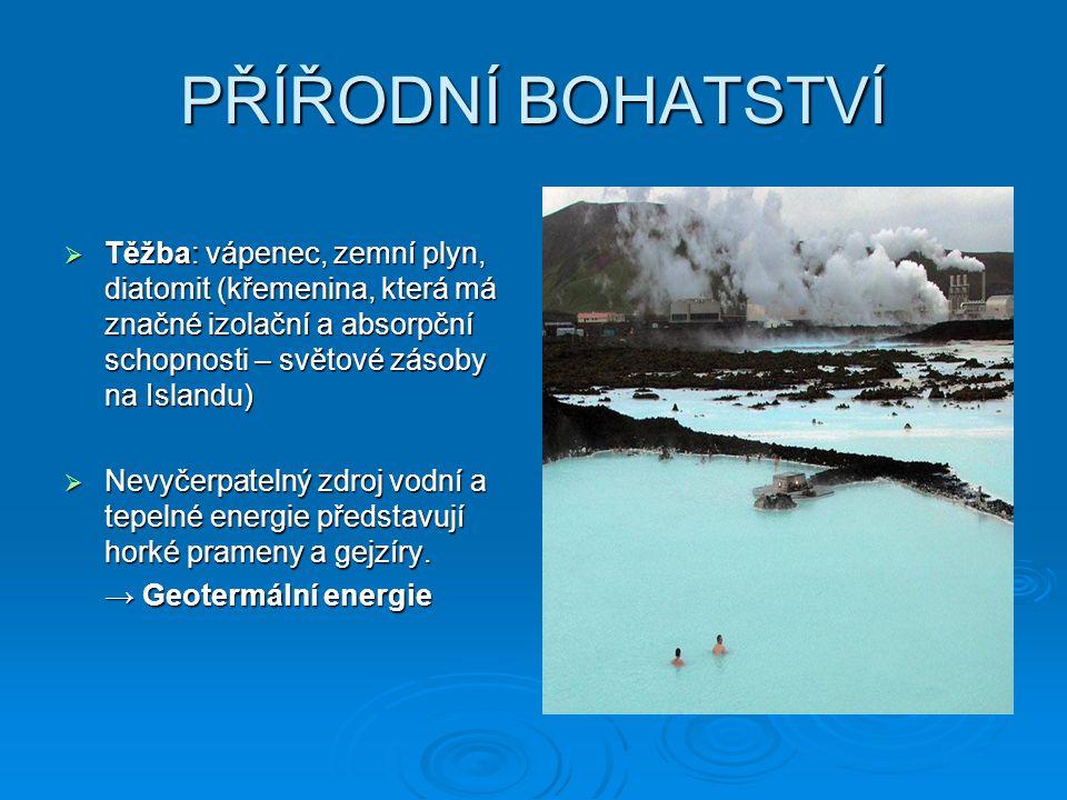 PŘÍŘODNÍ BOHATSTVÍ  Těžba: vápenec, zemní plyn, diatomit (křemenina, která má značné izolační a absorpční schopnosti – světové zásoby na Islandu)  N