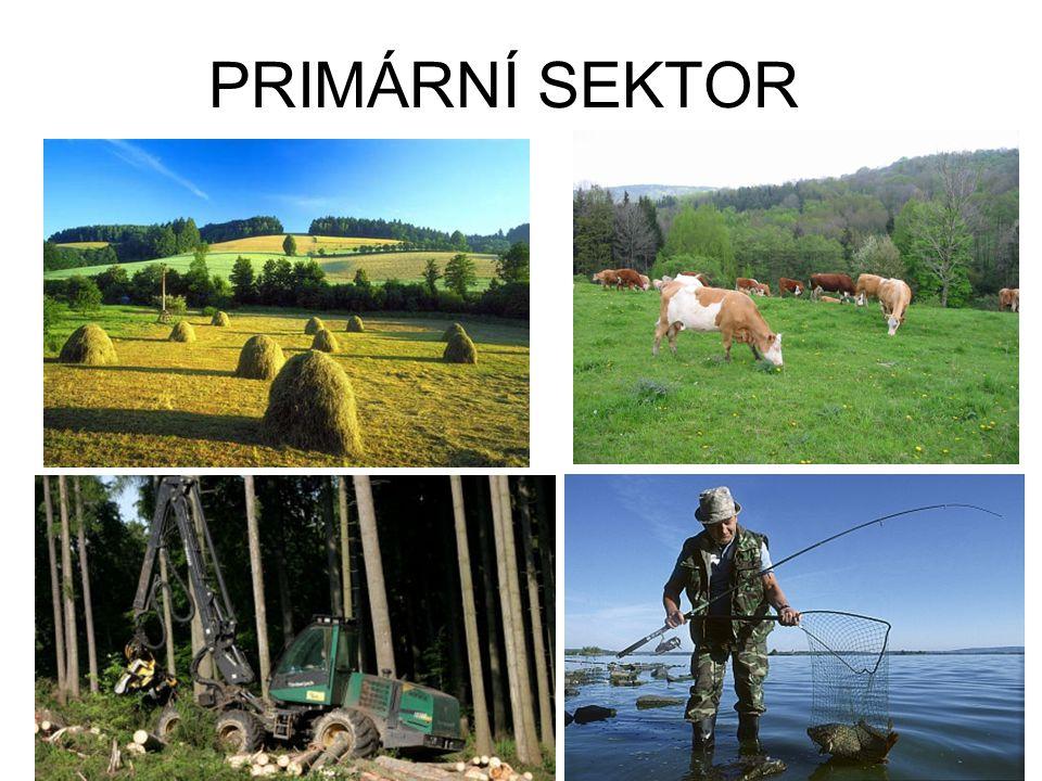 SVĚTOVÉ ZEMĚDĚLSTVÍ Zemědělství poskytuje – potraviny, suroviny pro průmysl (textilní vlákna,olejniny) Ve světě rozdíly ve výkonnosti zemědělství: 1) ZEMĚDĚLSTVÍ VYSPĚLÝCH ZEMÍ: produkce pro trh (velké přebytky), 5% aktivního obyvatelstva, velké výnosy plodin a užitkovost zvířat (hnojení, mechanizace, moderní technologie).