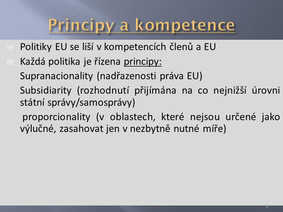  Cíle: posílení evropské konkurenceschopnosti a efektivity ekonomiky - Eliminace kolísání kurzů a rizik způsobených kolísáním kurzů - Eliminace transakčních nákladů spojených s výměnou měny - Doplnění jednotného vnitřního trhu - Vyšší transparentnost cen - Stabilizace cenové hladiny (ECB) - Důsledky pro veřejné finance - Euro jako společná měna – význam pro světové trhy, zvýšení váhy ES ve společném obchodě 13