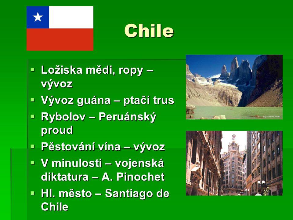 Chile  Ložiska mědi, ropy – vývoz  Vývoz guána – ptačí trus  Rybolov – Peruánský proud  Pěstování vína – vývoz  V minulosti – vojenská diktatura
