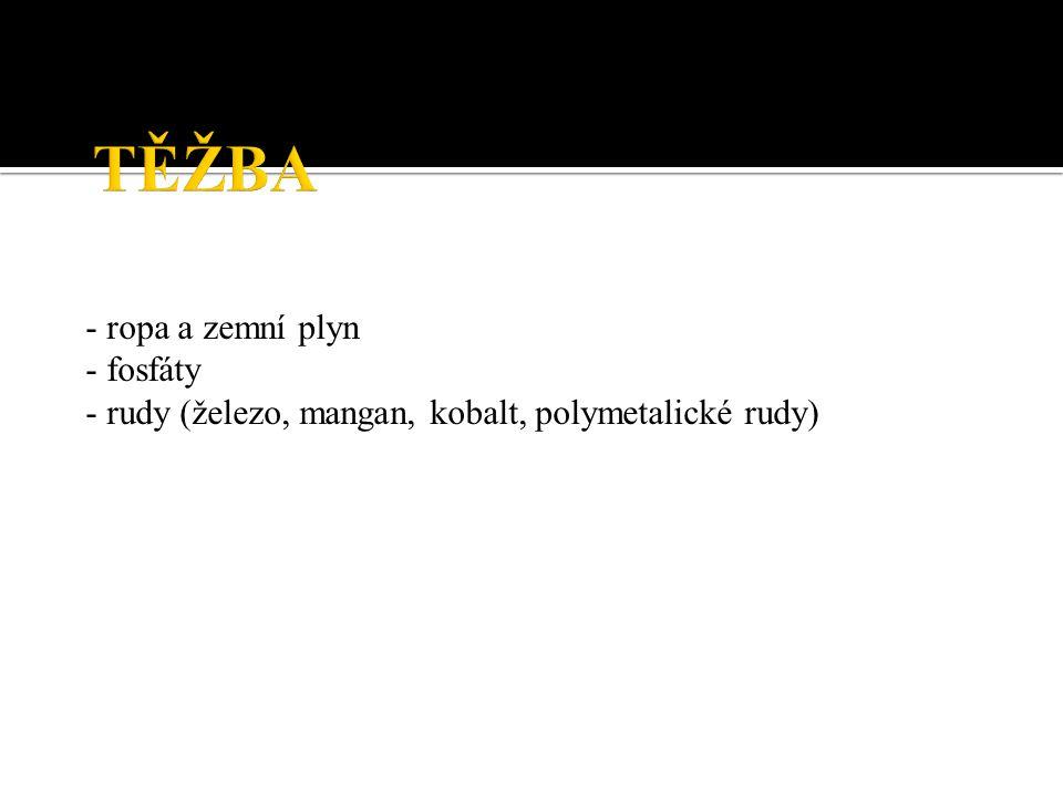 - ropa a zemní plyn - fosfáty - rudy (železo, mangan, kobalt, polymetalické rudy)