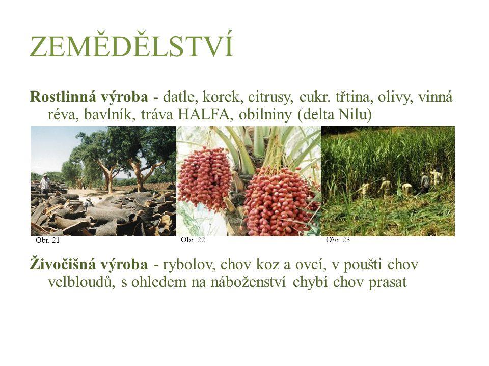 ZEMĚDĚLSTVÍ Rostlinná výroba - datle, korek, citrusy, cukr. třtina, olivy, vinná réva, bavlník, tráva HALFA, obilniny (delta Nilu) Živočišná výroba -