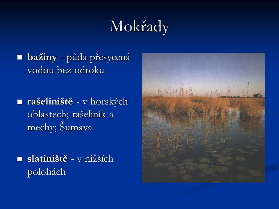 Mokřady bažiny - půda přesycená vodou bez odtoku bažiny - půda přesycená vodou bez odtoku rašeliniště - v horských oblastech; rašeliník a mechy; Šumav