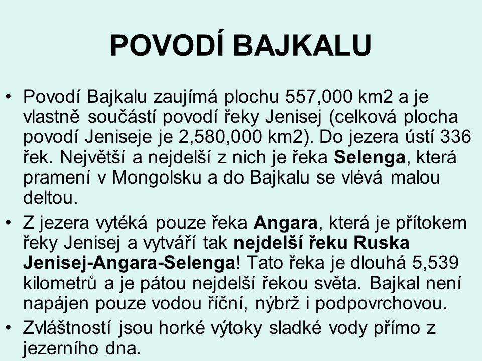 POVODÍ BAJKALU Povodí Bajkalu zaujímá plochu 557,000 km2 a je vlastně součástí povodí řeky Jenisej (celková plocha povodí Jeniseje je 2,580,000 km2).