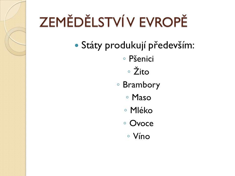 ZEMĚDĚLSTVÍ V EVROPĚ Státy produkují především: ◦ Pšenici ◦ Žito ◦ Brambory ◦ Maso ◦ Mléko ◦ Ovoce ◦ Víno