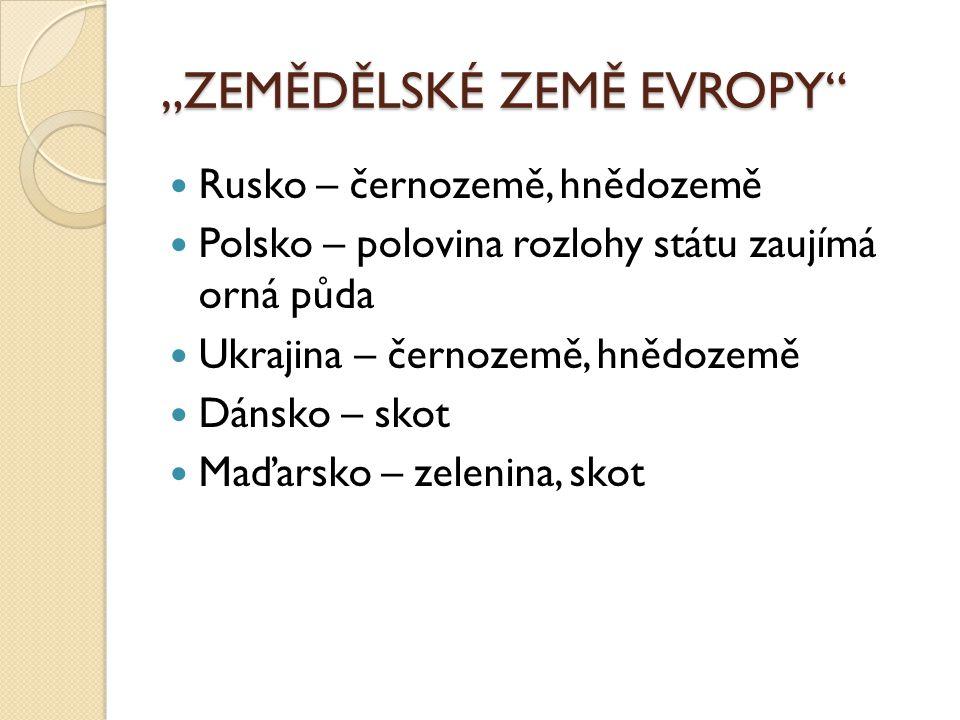 """""""ZEMĚDĚLSKÉ ZEMĚ EVROPY"""" Rusko – černozemě, hnědozemě Polsko – polovina rozlohy státu zaujímá orná půda Ukrajina – černozemě, hnědozemě Dánsko – skot"""