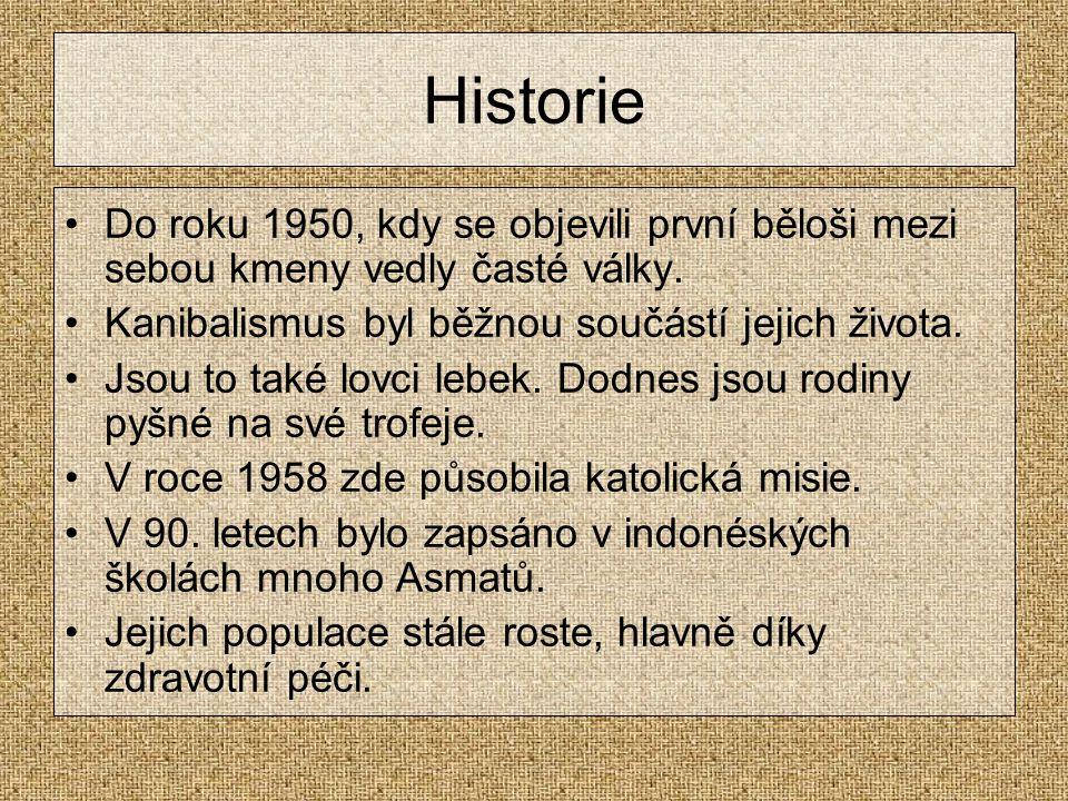 Historie Do roku 1950, kdy se objevili první běloši mezi sebou kmeny vedly časté války.