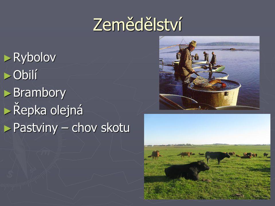 Zemědělství ► Rybolov ► Obilí ► Brambory ► Řepka olejná ► Pastviny – chov skotu