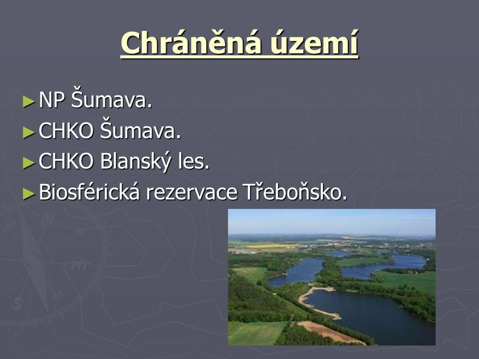 Chráněná území ► NP Šumava. ► CHKO Šumava. ► CHKO Blanský les. ► Biosférická rezervace Třeboňsko.