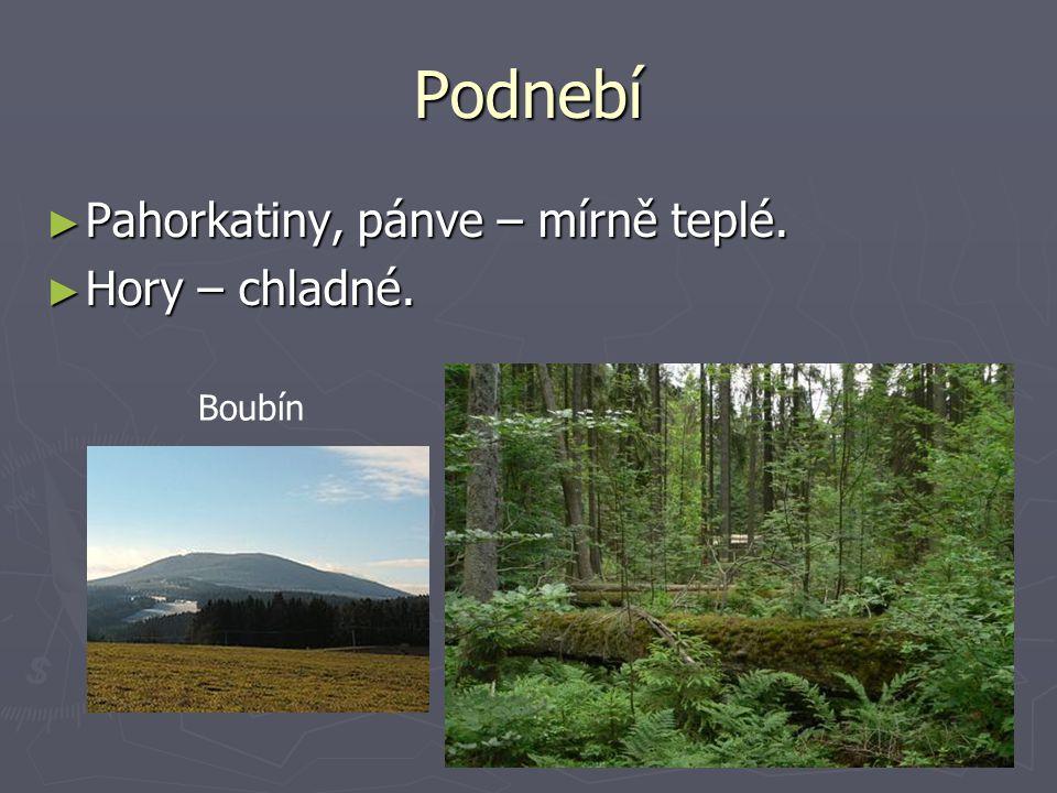Podnebí ► Pahorkatiny, pánve – mírně teplé. ► Hory – chladné. Boubín