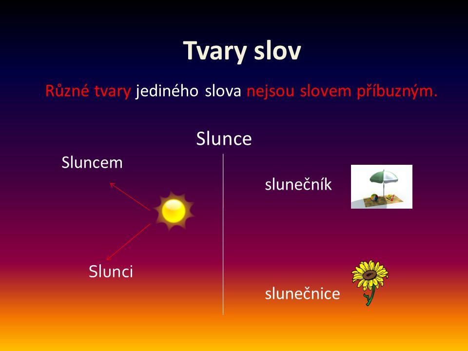 Tvary slov Různé tvary jediného slova nejsou slovem příbuzným. Slunce Sluncem slunečník Slunci slunečnice