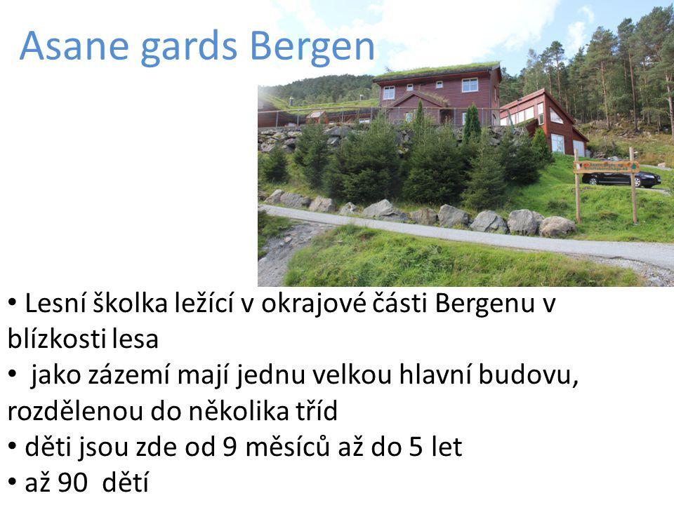 Asane gards Bergen Lesní školka ležící v okrajové části Bergenu v blízkosti lesa jako zázemí mají jednu velkou hlavní budovu, rozdělenou do několika t