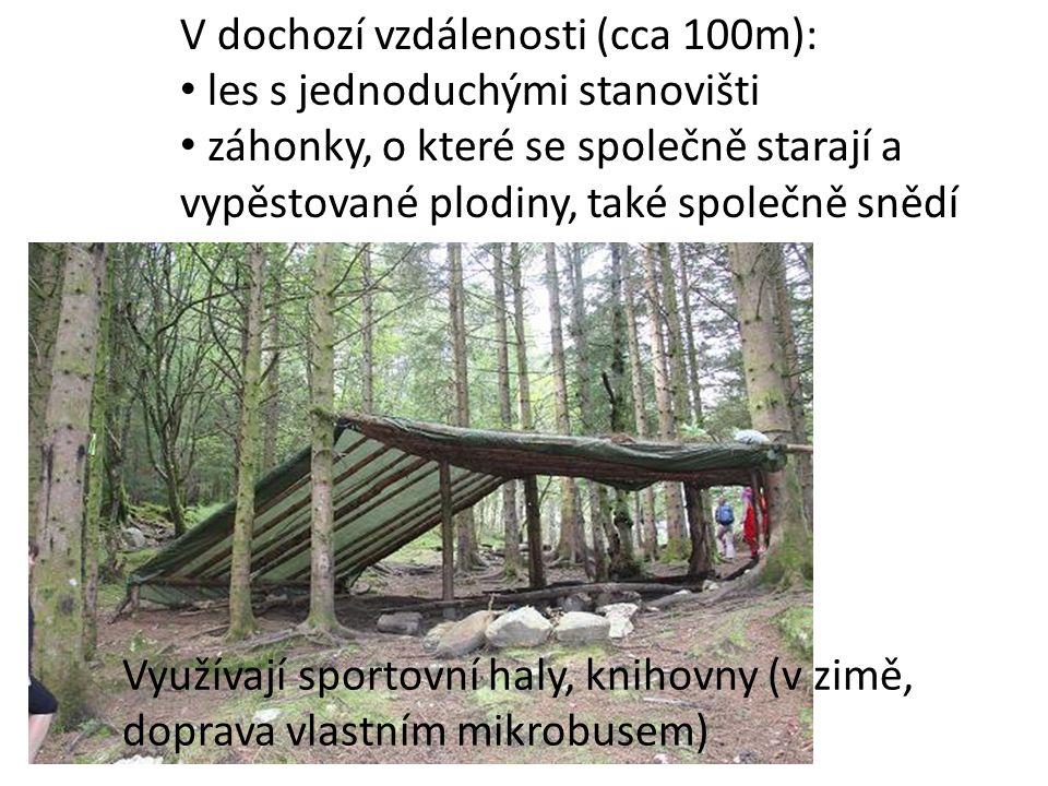 V dochozí vzdálenosti (cca 100m): les s jednoduchými stanovišti záhonky, o které se společně starají a vypěstované plodiny, také společně snědí Využív
