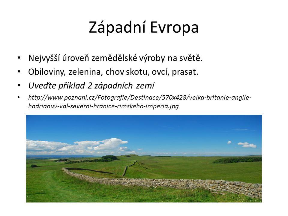 Západní Evropa Nejvyšší úroveň zemědělské výroby na světě. Obiloviny, zelenina, chov skotu, ovcí, prasat. Uveďte příklad 2 západních zemí http://www.p
