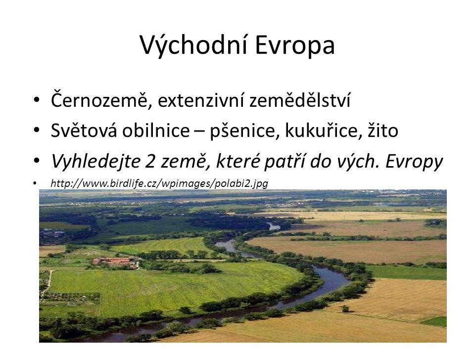 Východní Evropa Černozemě, extenzivní zemědělství Světová obilnice – pšenice, kukuřice, žito Vyhledejte 2 země, které patří do vých.