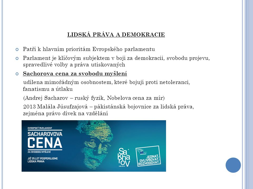 LIDSKÁ PRÁVA A DEMOKRACIE Patří k hlavním prioritám Evropského parlamentu Parlament je klíčovým subjektem v boji za demokracii, svobodu projevu, sprav