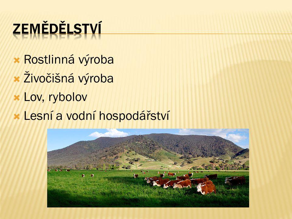  Rostlinná výroba  Živočišná výroba  Lov, rybolov  Lesní a vodní hospodářství