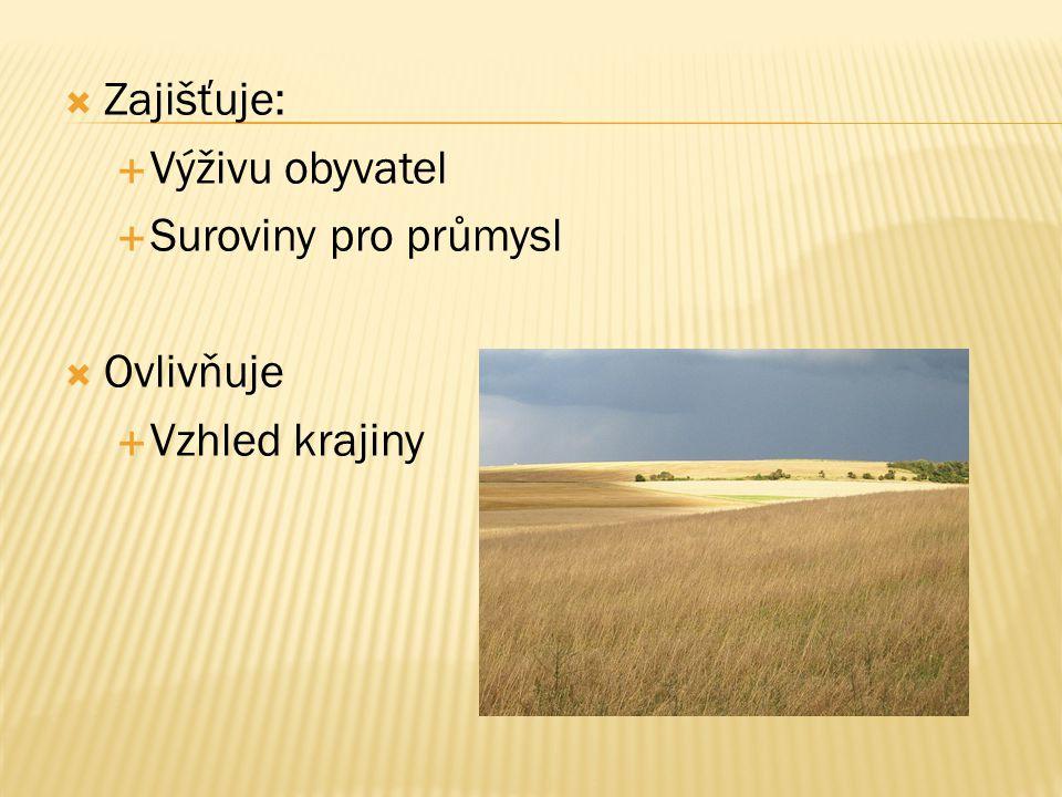  Zajišťuje:  Výživu obyvatel  Suroviny pro průmysl  Ovlivňuje  Vzhled krajiny