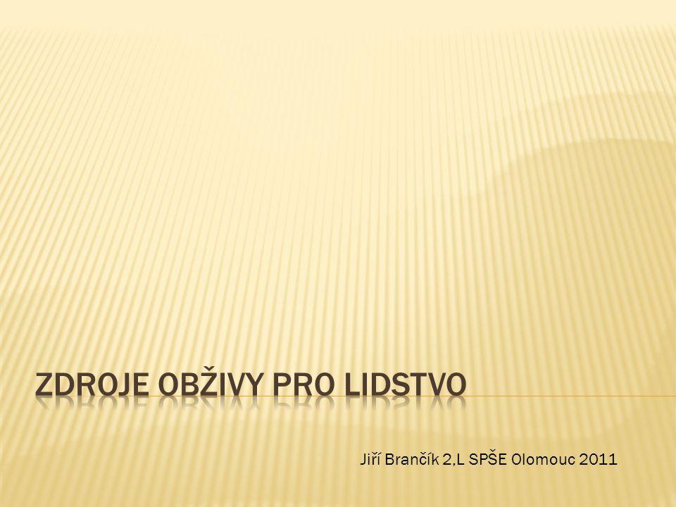 Jiří Brančík 2,L SPŠE Olomouc 2011