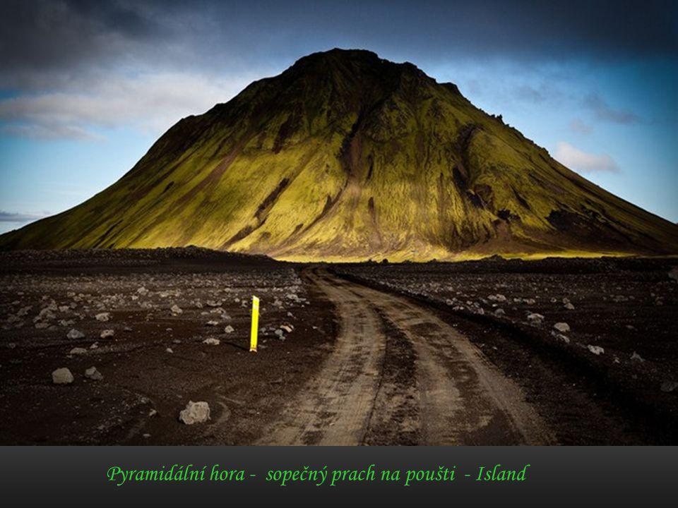 Racek stříbřitý – Faerské ostrovy