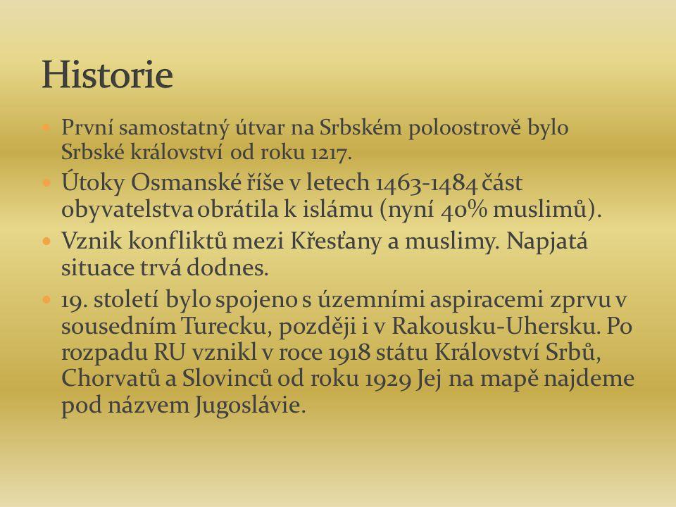 První samostatný útvar na Srbském poloostrově bylo Srbské království od roku 1217. Útoky Osmanské říše v letech 1463-1484 část obyvatelstva obrátila k