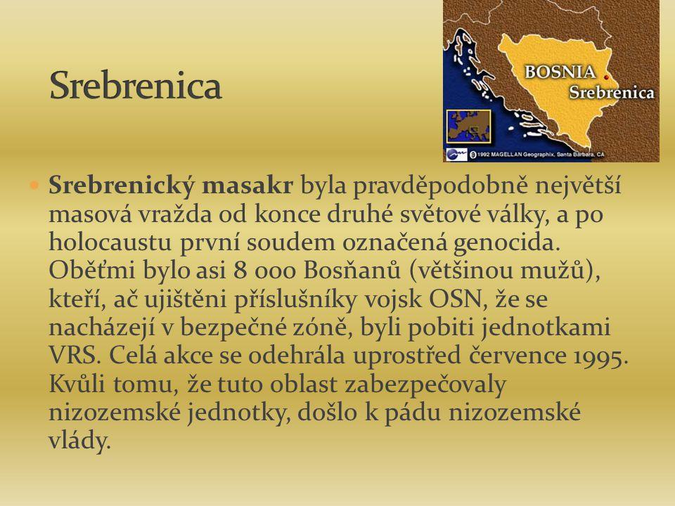 Srebrenický masakr byla pravděpodobně největší masová vražda od konce druhé světové války, a po holocaustu první soudem označená genocida. Oběťmi bylo