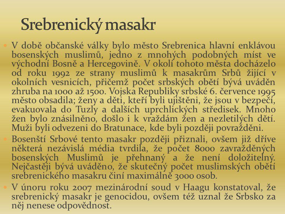 V době občanské války bylo město Srebrenica hlavní enklávou bosenských muslimů, jedno z mnohých podobných míst ve východní Bosně a Hercegovině.