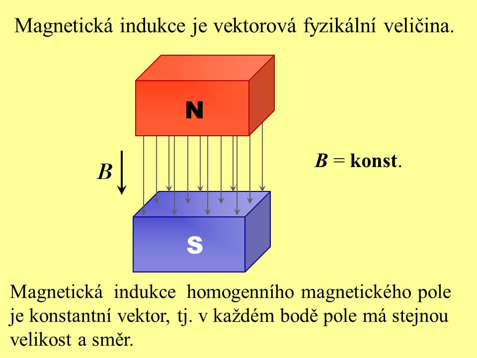 Magnetická indukce homogenního magnetického pole je konstantní vektor, tj. v každém bodě pole má stejnou velikost a směr. Magnetická indukce je vektor