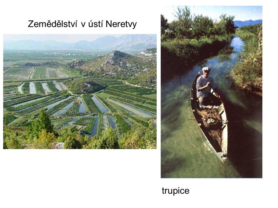 Jezera – rozmanitý původ: -krasová -tektonická (pohyby zemských desek propadlina –např.