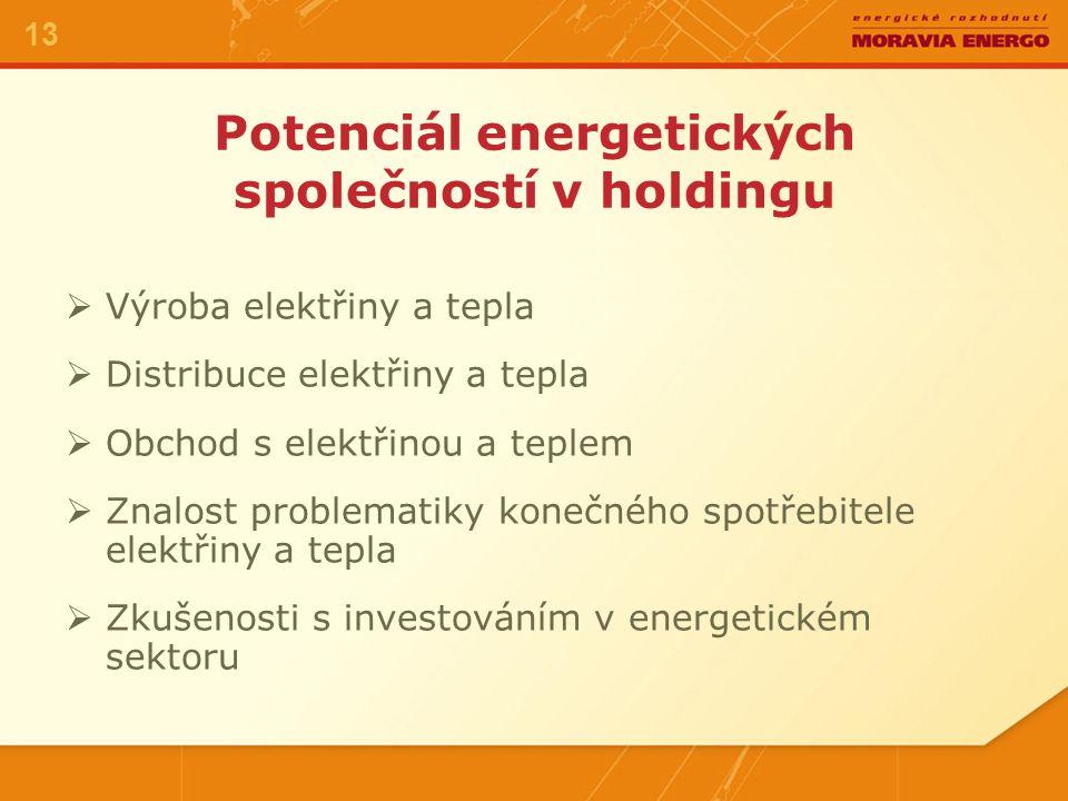Potenciál energetických společností v holdingu VVýroba elektřiny a tepla DDistribuce elektřiny a tepla OObchod s elektřinou a teplem ZZnalost problematiky konečného spotřebitele elektřiny a tepla ZZkušenosti s investováním v energetickém sektoru 13