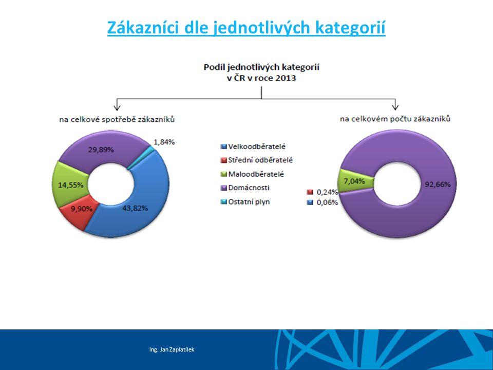 Ing. Jan Zaplatílek Zákazníci dle jednotlivých kategorií
