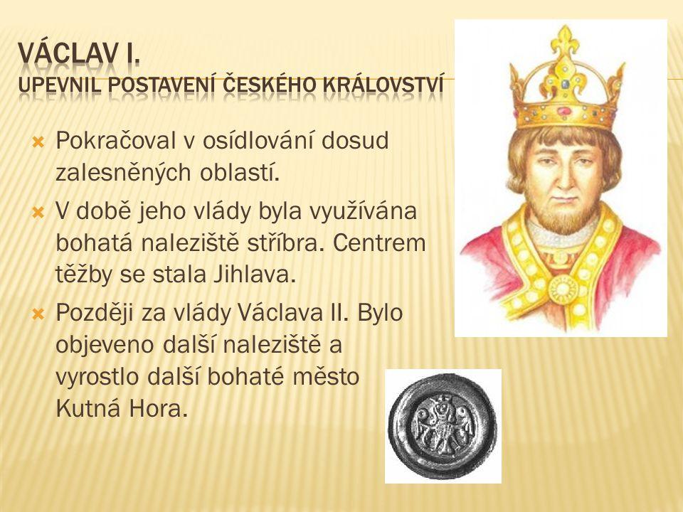  Byla dcerou Přemysla Otakara I.a sestrou Václava I..