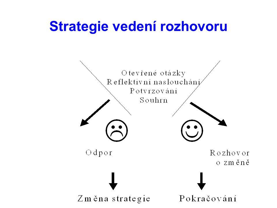 Strategie vedení rozhovoru