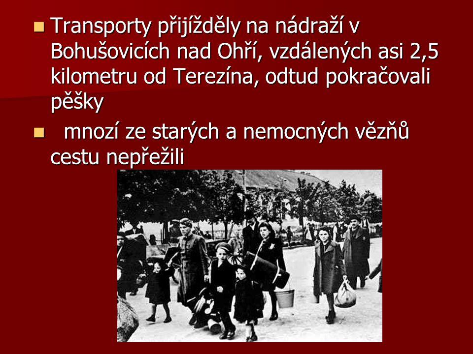 Transporty přijížděly na nádraží v Bohušovicích nad Ohří, vzdálených asi 2,5 kilometru od Terezína, odtud pokračovali pěšky Transporty přijížděly na n