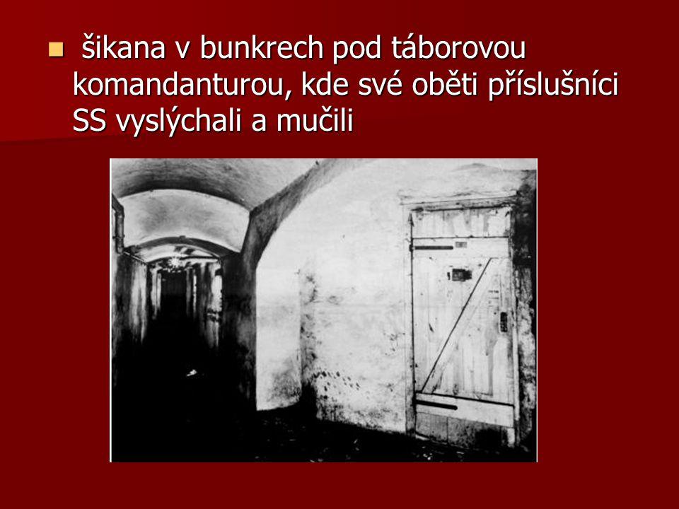 šikana v bunkrech pod táborovou komandanturou, kde své oběti příslušníci SS vyslýchali a mučili šikana v bunkrech pod táborovou komandanturou, kde své