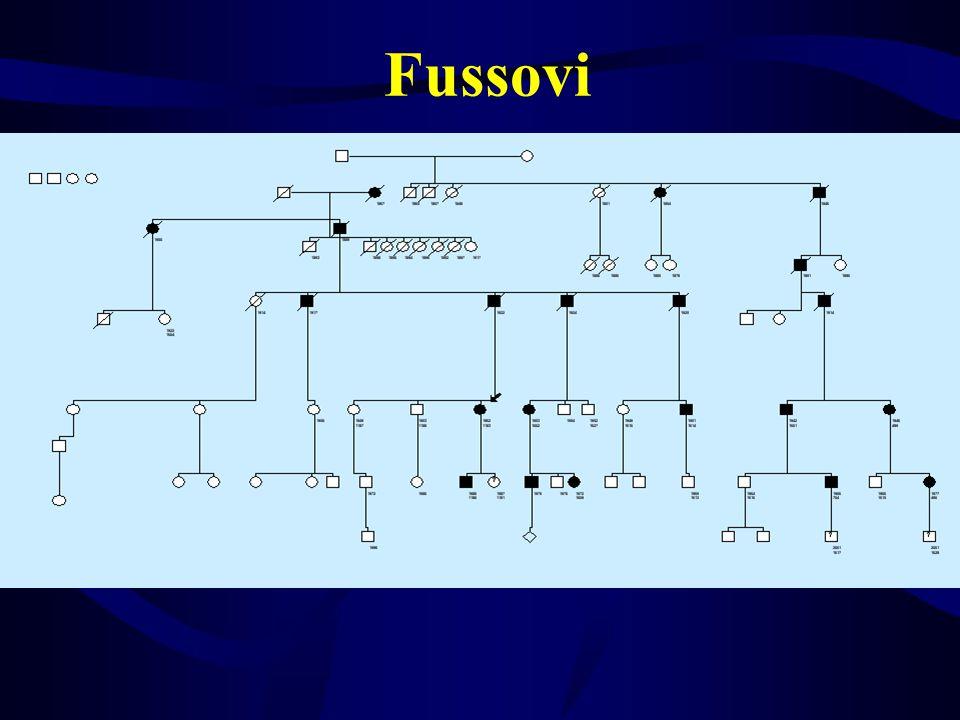 Fussovi