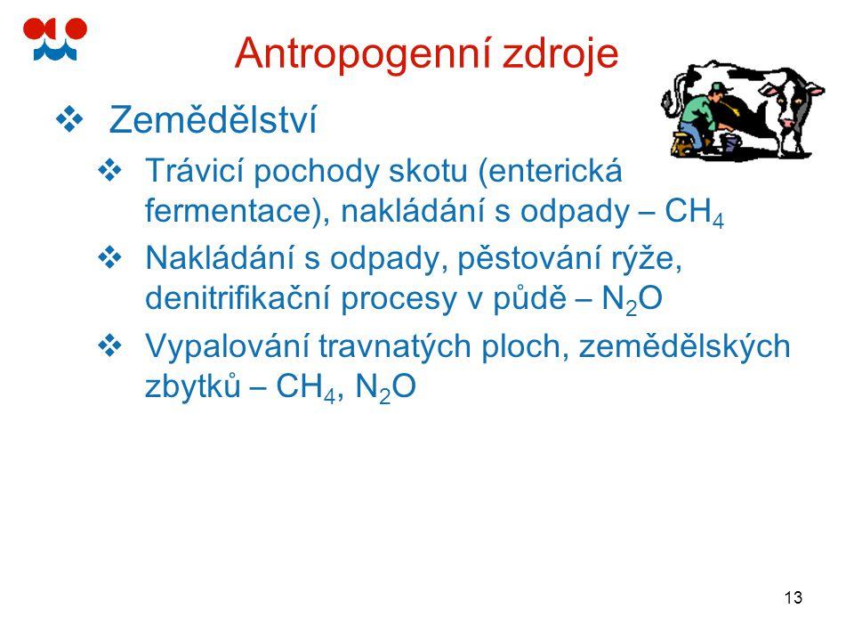 13 Antropogenní zdroje  Zemědělství  Trávicí pochody skotu (enterická fermentace), nakládání s odpady – CH 4  Nakládání s odpady, pěstování rýže, d