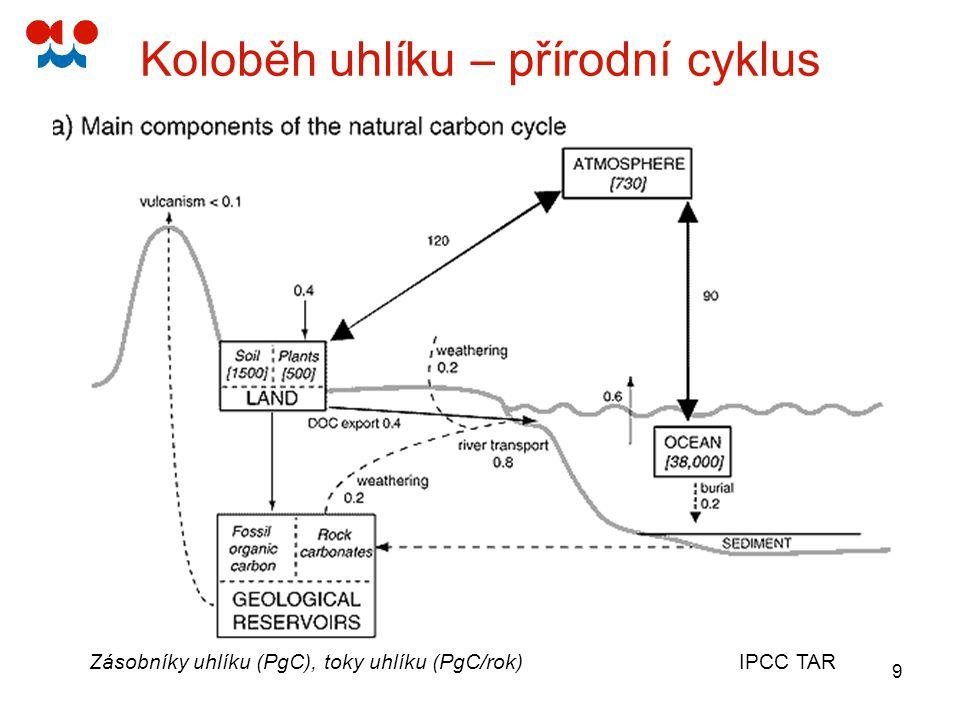 10 Koloběh uhlíku – vliv člověka Zásobníky uhlíku (PgC), toky uhlíku (PgC/rok) IPCC TAR