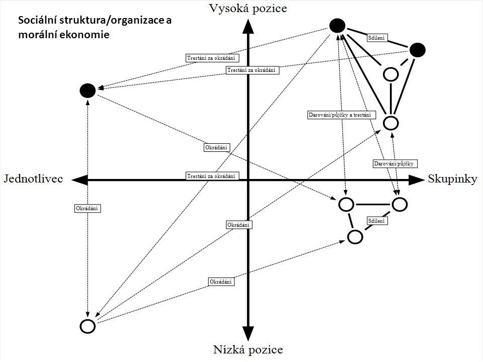 Sociální struktura/organizace a morální ekonomie