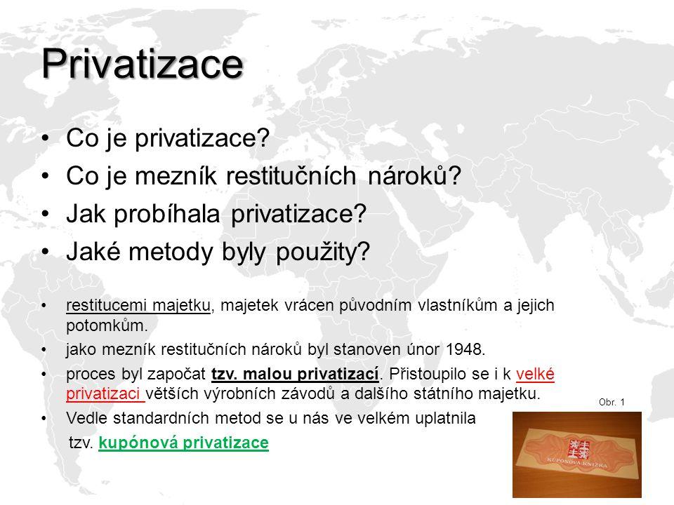 Privatizace Co je privatizace.Co je mezník restitučních nároků.