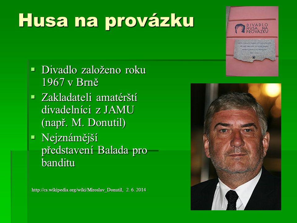 Husa na provázku  Divadlo založeno roku 1967 v Brně  Zakladateli amatérští divadelníci z JAMU (např.