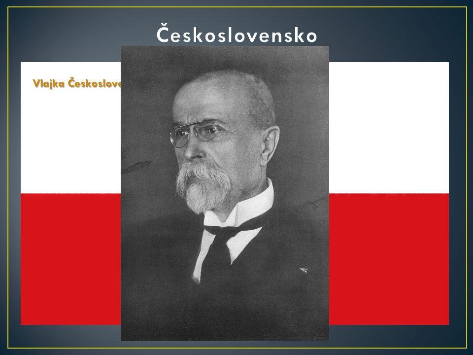 V první světové válce bojovalo 1,5 milionu mužů odvedených z českých okresů, z nichž padlo 138 000 na straně monarchie a asi pět a půl tisíce v legiíc