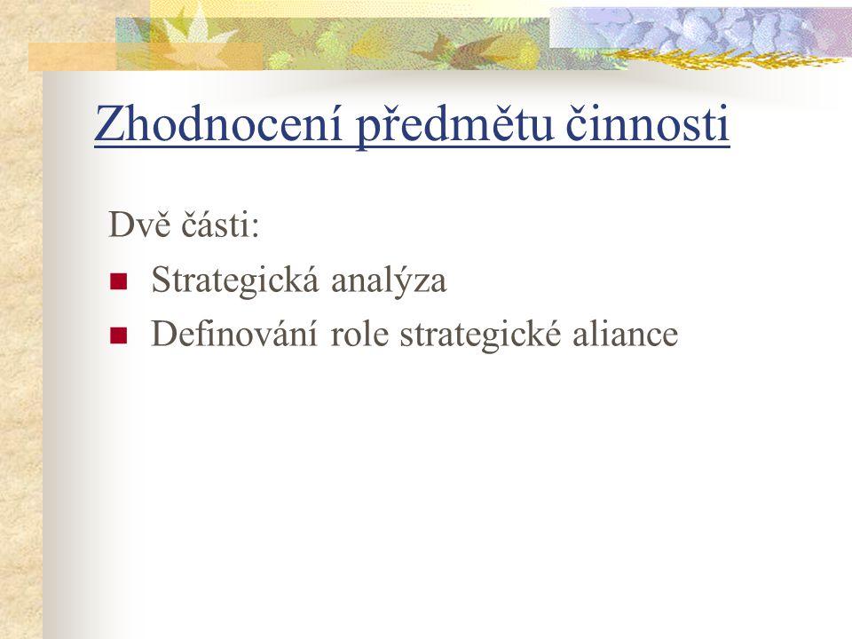Dvě části: Strategická analýza Definování role strategické aliance Zhodnocení předmětu činnosti