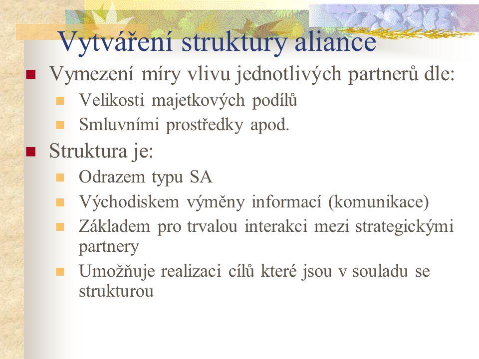 Vytváření struktury aliance Vymezení míry vlivu jednotlivých partnerů dle: Velikosti majetkových podílů Smluvními prostředky apod. Struktura je: Odraz