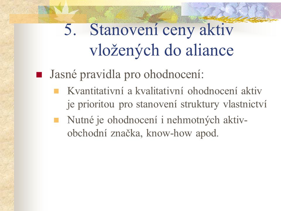 5.Stanovení ceny aktiv vložených do aliance Jasné pravidla pro ohodnocení: Kvantitativní a kvalitativní ohodnocení aktiv je prioritou pro stanovení st