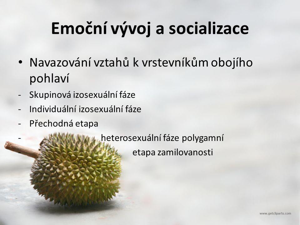 Emoční vývoj a socializace Navazování vztahů k vrstevníkům obojího pohlaví -Skupinová izosexuální fáze -Individuální izosexuální fáze -Přechodná etapa - heterosexuální fáze polygamní - etapa zamilovanosti