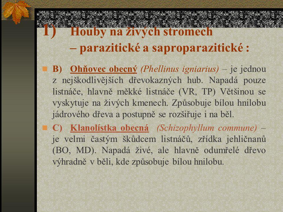 1) Houby na živých stromech – parazitické a saproparazitické : Outkovka dubová (Trametes guernica) je saproparazitická houba. Je častým škůdcem listná