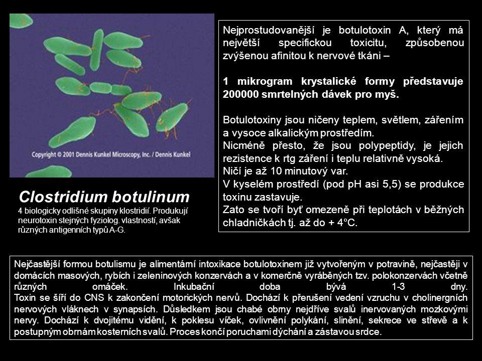 Clostridium botulinum 4 biologicky odlišné skupiny klostridií. Produkují neurotoxin stejných fyziolog. vlastností, avšak různých antigenních typů A-G.