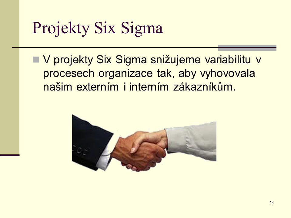 13 Projekty Six Sigma V projekty Six Sigma snižujeme variabilitu v procesech organizace tak, aby vyhovovala našim externím i interním zákazníkům.