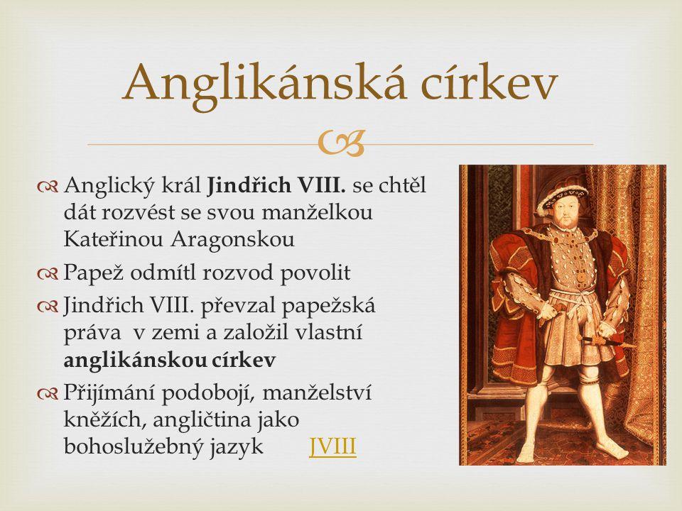  Anglický král Jindřich VIII.